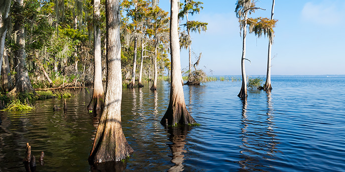St. Johns River in Clay County